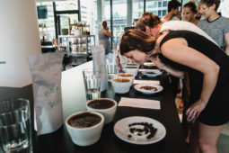 Public Coffee Roasters: cupping