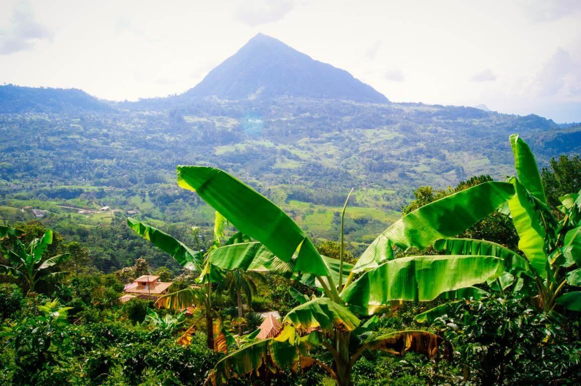 Vista Finca Colombia